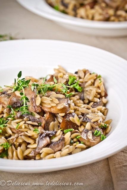 Mushroom Orzotto - a delicious vegetarian pasta version of risotto that is so quick and easy to prepare.