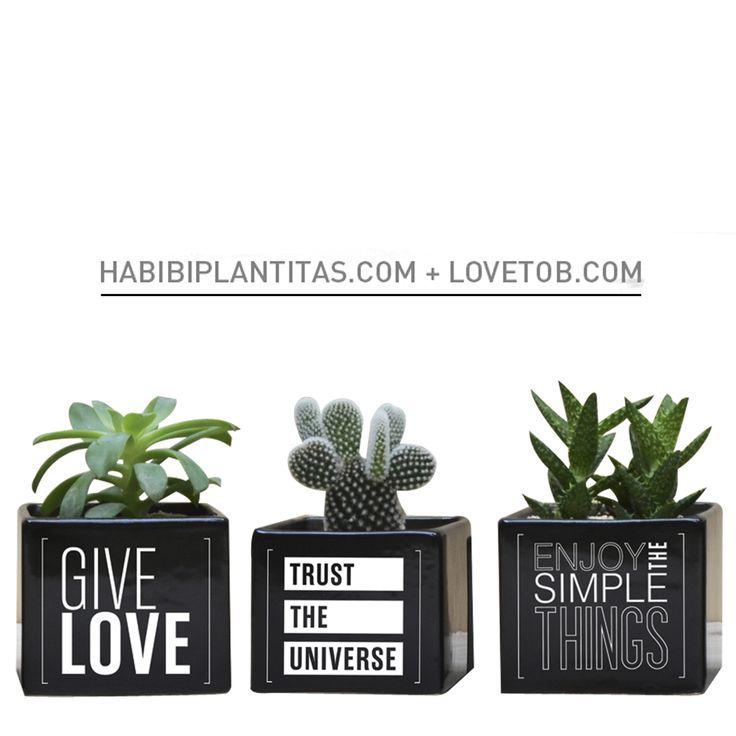 HABIBI + LOVE TO BE