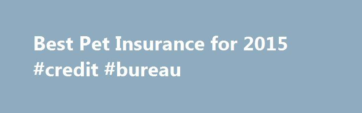 Best Pet Insurance for 2015 #credit #bureau http://insurances.nef2.com/best-pet-insurance-for-2015-credit-bureau/  #pet insurance compare # Compare Reviews for Pet Insurance When it comes to pet insurance, many pet owners aren't sure if they really need it. We created this simple quiz to help consumers learn if pet insurance could be right for them. Pet insurance helps pet owners pay the cost of medical expenses if the pet becomes ill or has an accident. Some pet insurance plans cover…