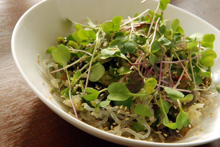 Sea Weeds and Greens Salad (aka Kelp Noodles with Wakame and Radish Sprouts)
