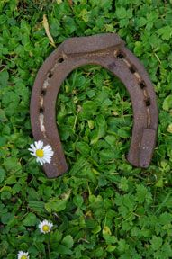 Irish and Celtic wedding centerpieces can be fun or formal. Consider a decorative horseshoe centerpiece.