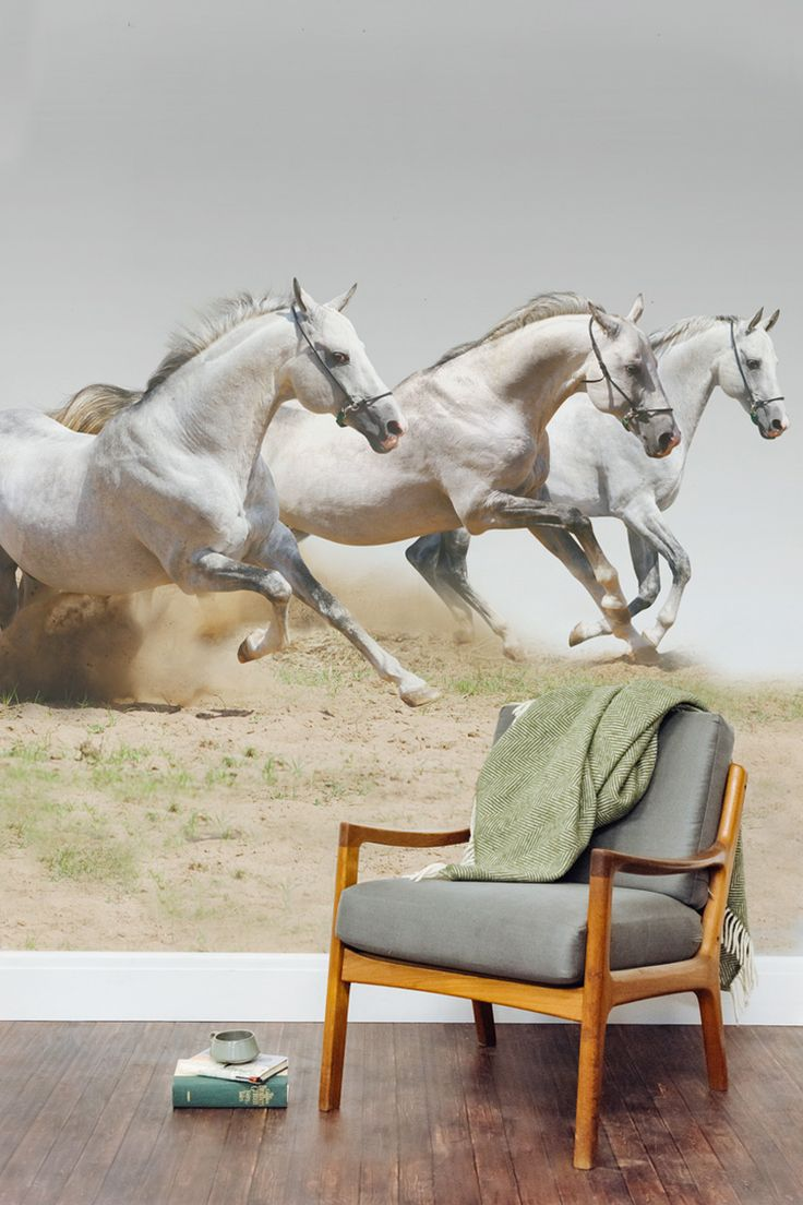 Elegant equestrian style in your home. This horse wallpaper mural is simply beautiful.