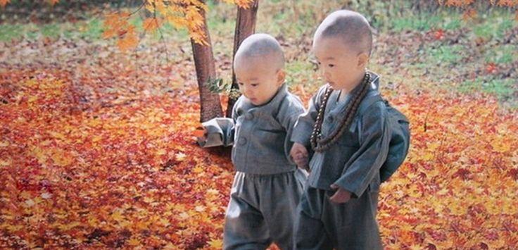 Poţi încerca şi tu să înveți din tradițiile poporului tibetan.Cel mai important este să nu aplici pedeapsa fizică şi umilinţa psihică. Singurul motiv pentru care unii părinţi bat copiii este pentru că ei nu pot …