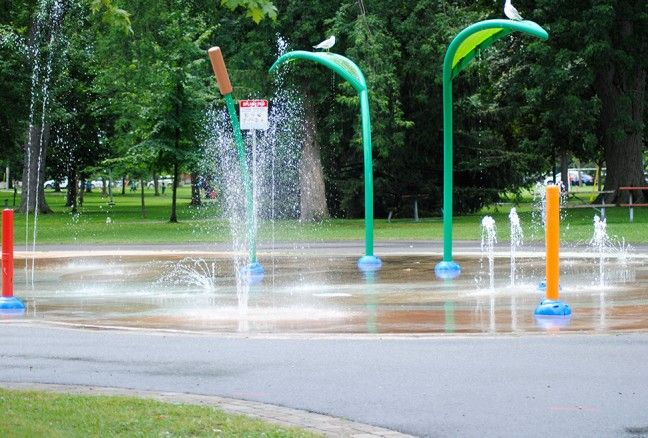 Even the seagulls approve of the splashpad in Kingston!