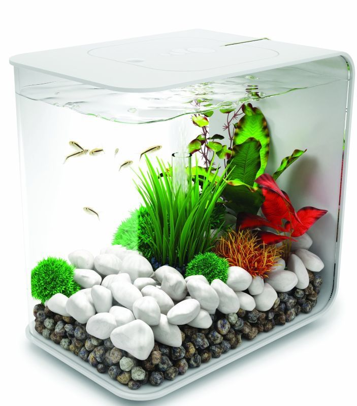 biorb 15l flow aquarium 120usd plastique industriel awesome aquariums pinterest inspiration. Black Bedroom Furniture Sets. Home Design Ideas
