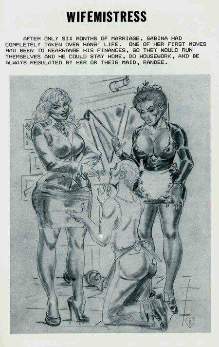 Amusing idea stantoon femdom comics apologise, but