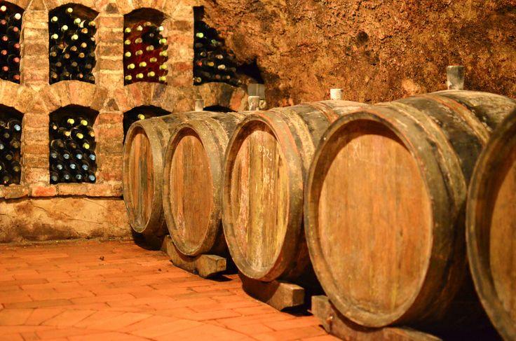 Miklos Csabi's cellar. Mór #hungarianwine