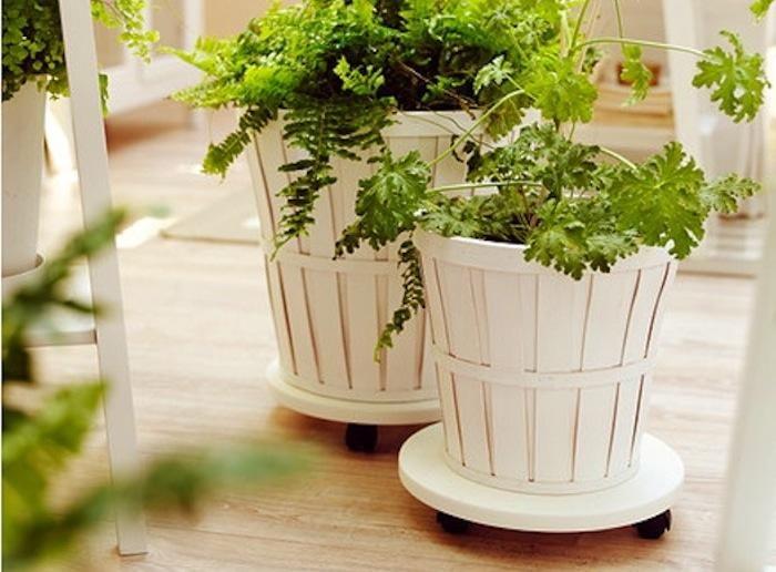 82 best bushel baskets images on pinterest bushel baskets gift baskets and basket crafts - Indoor potted flowers ...