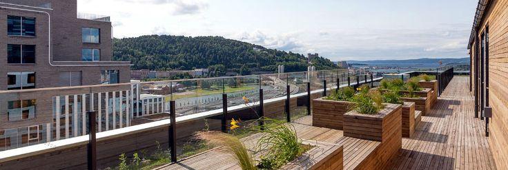 1-soveroms leiligheter i Oslo