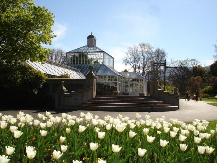 Trovolo - Dunedin #travel #NewZealand #photography #NZ #fun #outdoors #nature #dunedin #gardens