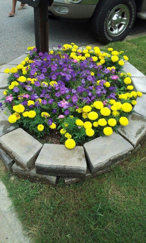 Flower garden around the mailbox