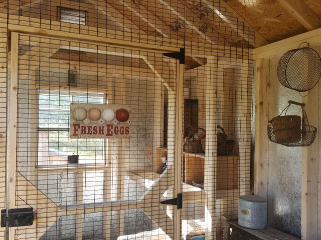 Come Tour my New Chicken Coop from Horizon Structures - this is a sweet coop! | Fresh Eggs Daily