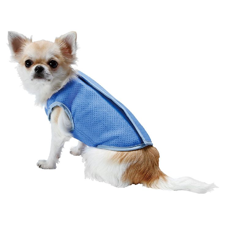 LotFancy Dog Cooling Vest Jacket Coats Swamp Cooler for Puppies Cats Kittens Pets, Blue * Be sure to check out this awesome product. (This is an affiliate link and I receive a commission for the sales)