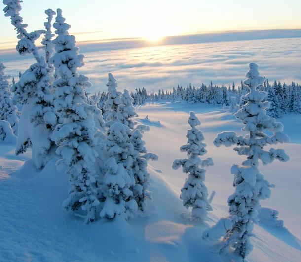 Hudson Bay Mountain Resort: Your Powder Destination #CDNGetaway