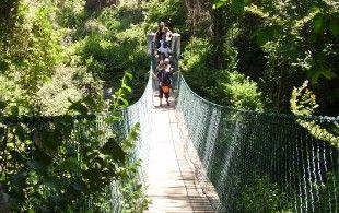 A minutos del ruido santiaguino este paraíso de la caminata y el aire libre. Ideal para disfrutar con un #GudPac. Energy y Full Mix vienen ad-hoc
