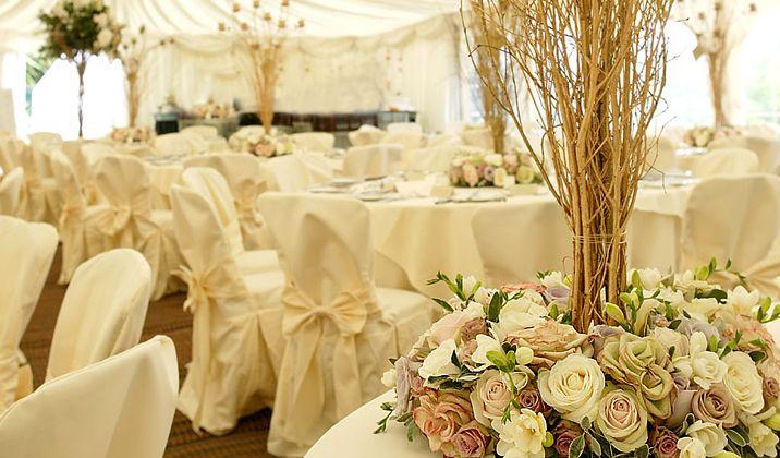 12 best wedding venue images on pinterest wedding places wedding wedding venue beeston nottingham beeston fields wedding reception junglespirit Choice Image