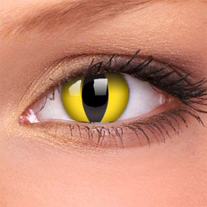 wild contacts | Cat Eye Crazy Contact Lenses (Pair) | Coloured Contact Lenses