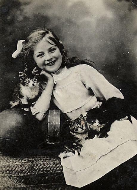 Studio portrait of a smiling girl and kittens, ca. 1900-1910.