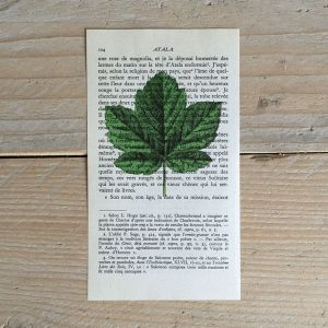 esdoornblad esdoorn blad print franse frans vintage oud pagina bladzijde poster Het Noteboompje