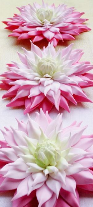 Sugar Flower Dahlias by Penelope d'Arcy Graham