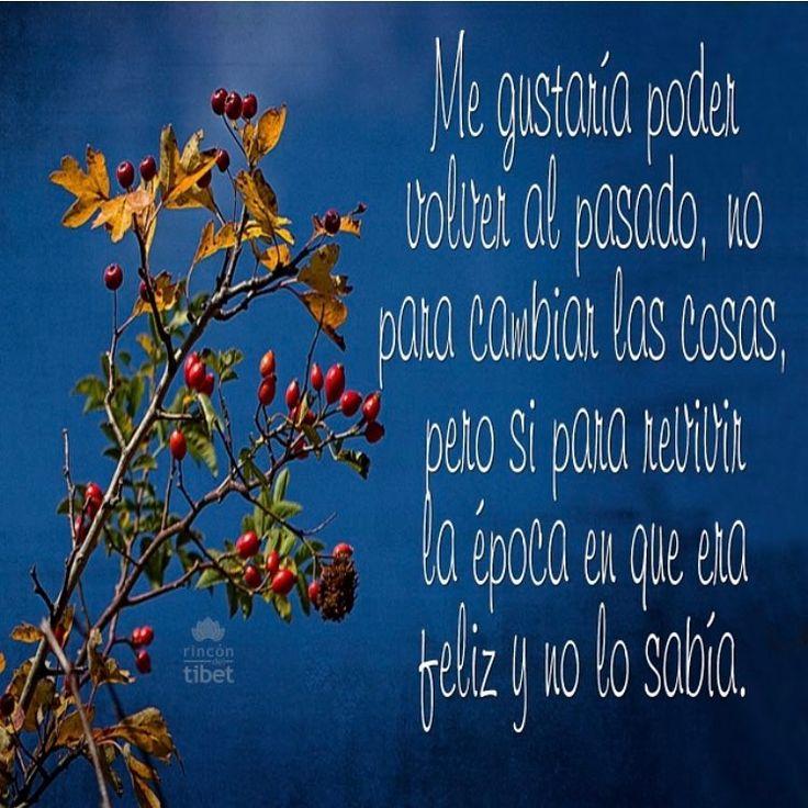 Me gustaría volver al pasado... #pensamientospositivos #volver #like4like #happy #pepelanau #pasado #rincondeltibet #feliz