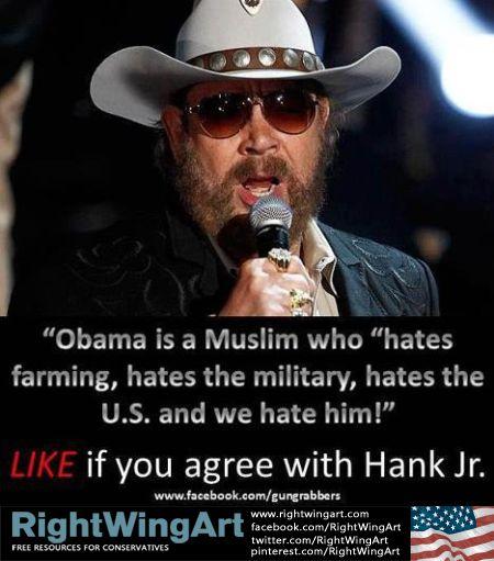 I Hate Obama | Right Wing Art - Image - Hank Jr: We hate Obama!