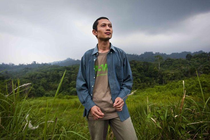 Indonésie : le José Bové de l'huile de palme fait renaitre la forêt tropicale