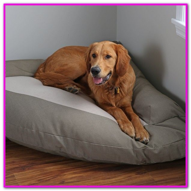 Elevated Dog Beds For Xlarge Dogs This Bed Is Cozy And Easy To Clean And It Keeps Your Pet Off The Cold Ha Dog Bed Large Elevated Dog Bed Extra
