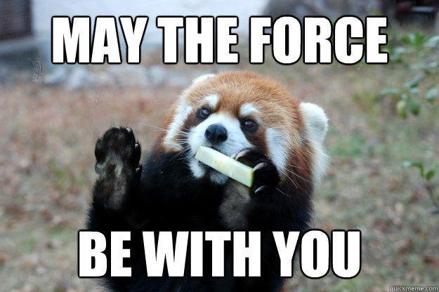 red panda meme的圖片搜尋結果