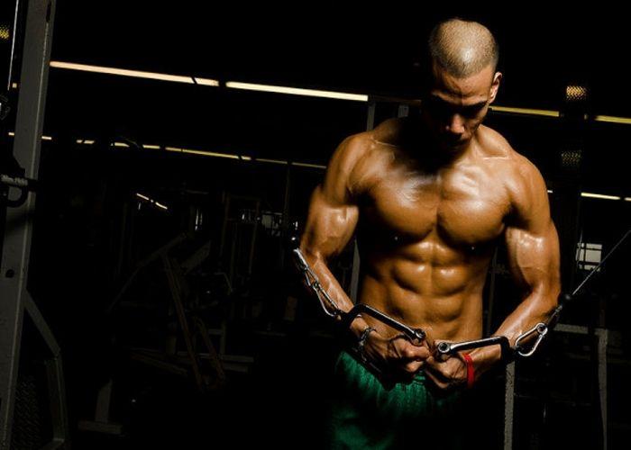 alimentos para construir musculo