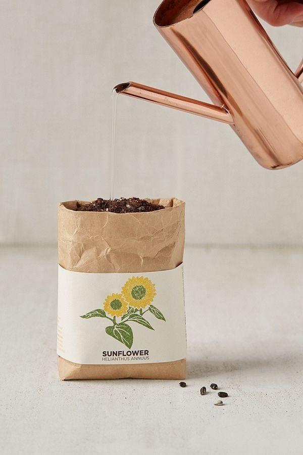 Cultivate + Enjoy Grow Kit