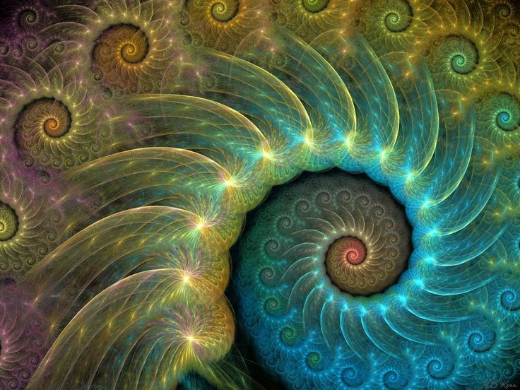 Peacock fractal - Summer Madness by ~HBKerr