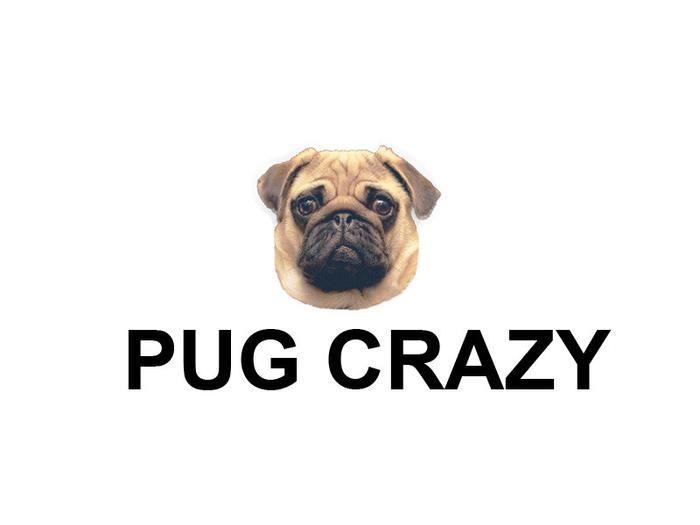 Pug Decorative Pillowcases 13 Styles Pug Crazy Pugs