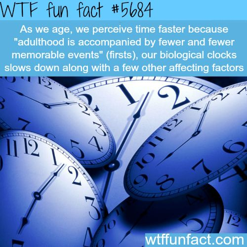 Why time is moving fast - This actually SUCKS Big Time!  ~WTF not-so-fun facts