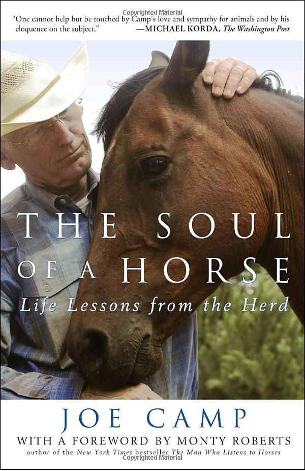 The Soul Of A Horse Life Lessons From Herd Joe Camp Monty Roberts Amazing Book