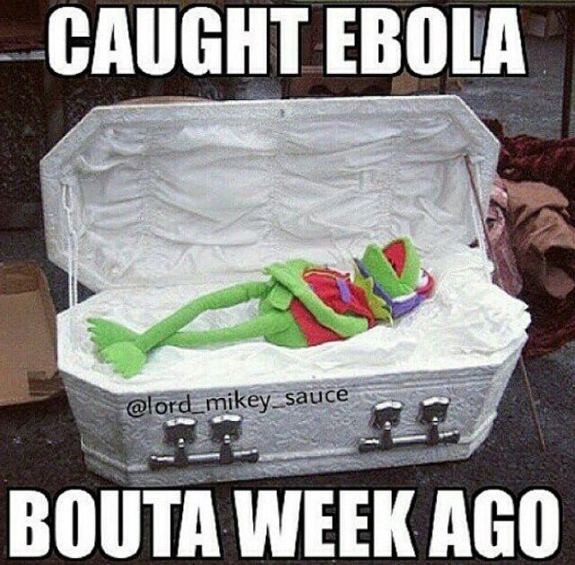42fb4c0e2827e88958b51ea4afc65307 tea party kermit the frog 29 best funny ebola images on pinterest funny stuff, funny shit,Funny Ebola Memes
