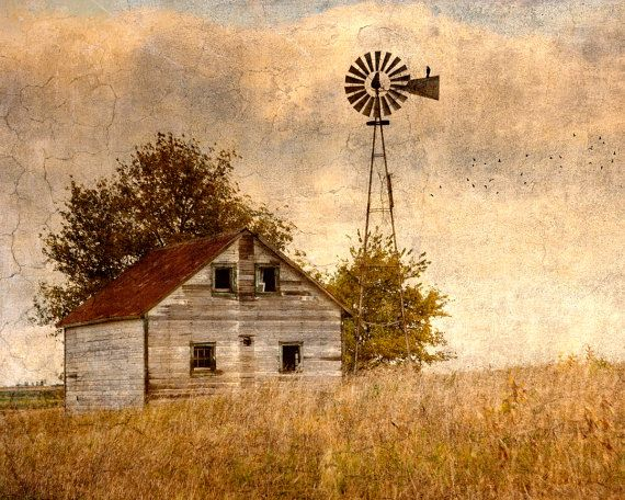 Country Photography - Home Decor - Warm - Nature - Birds - Windmill - Americana via Etsy