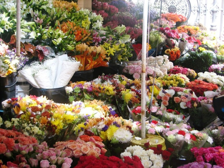 Adderley Street Flower Market (Hidden Treasures)