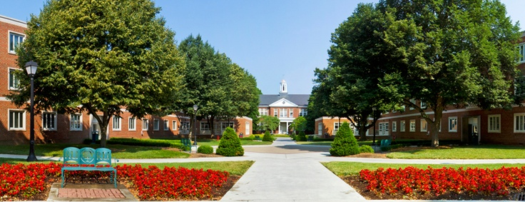 Radford University<3 Made this walk to Waldron & Young many times!
