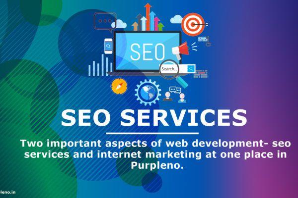 Seo Company Delhi Seo Services Seo Company Seo Packages