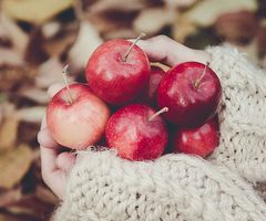 Apples | via Tumblr