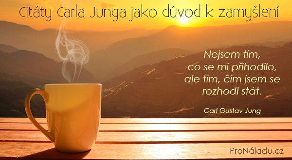 Citty Carla Junga jako dvod k zamylen  ProNladucz