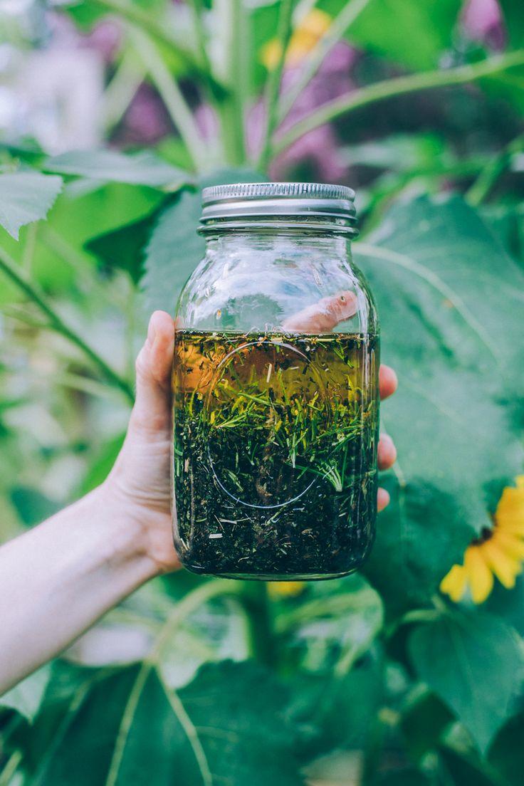 best Herbs for Sleep images on Pinterest Herbal medicine Herbs