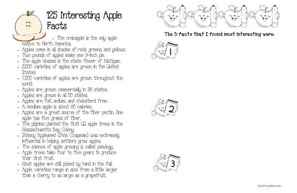 125 Interesting Apple Facts with 3 comprehension writing activities. FREE printables.