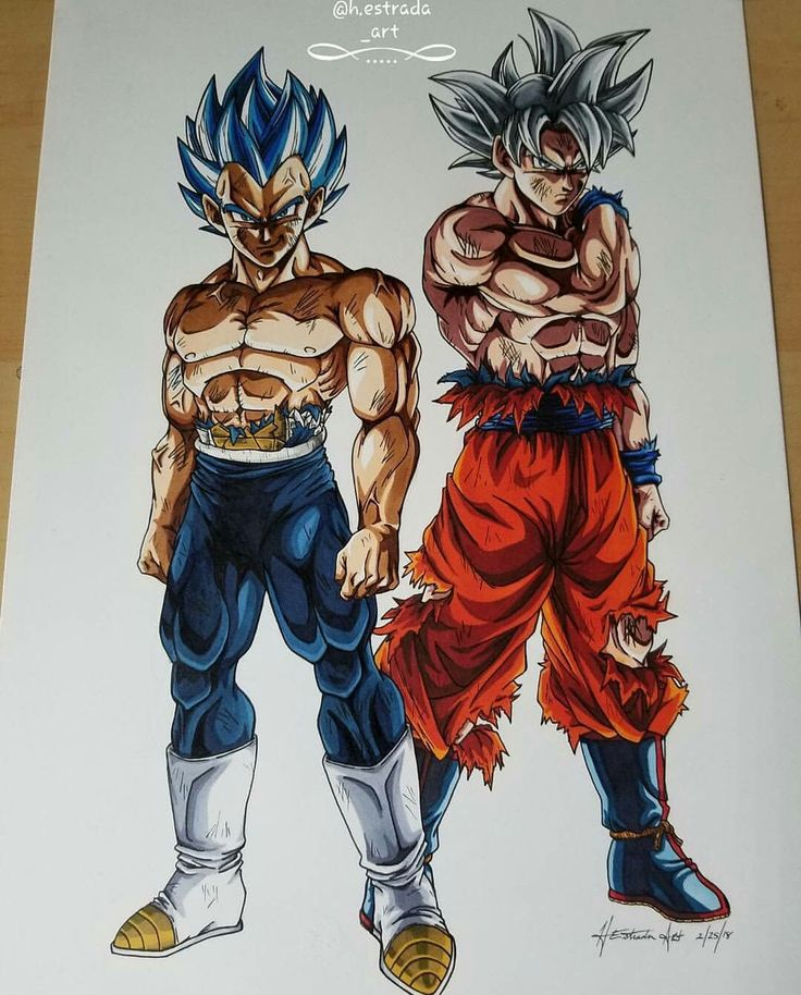 Dragon ball super | Goku & Vegeta