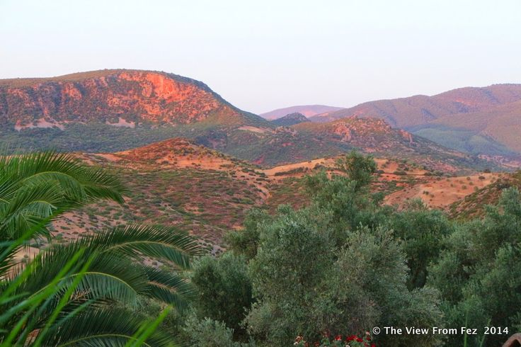 The View from Fez went searching for the perfect combination of cooler weather and tranquility. We found the answer just over 80 Kilometres from Fez, at Auberge Ain Sahla