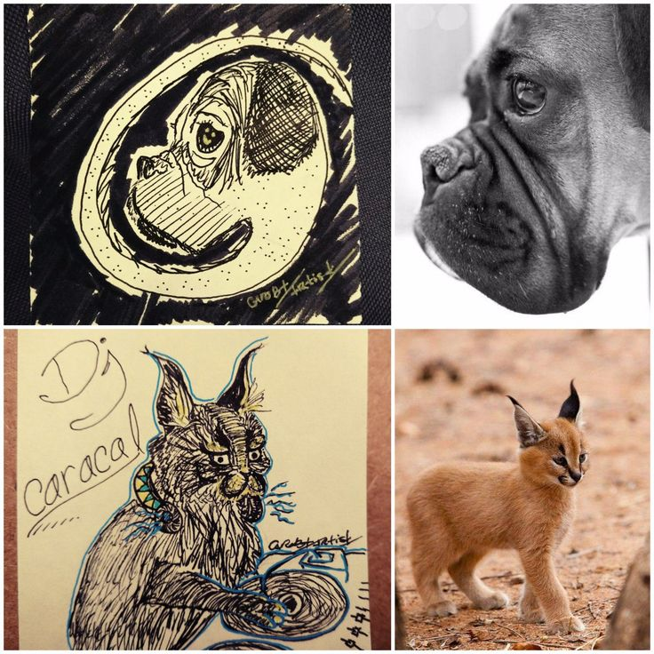 CaroBT Artist (@carobtartist)   Twitter #postit art daily drawing challenge