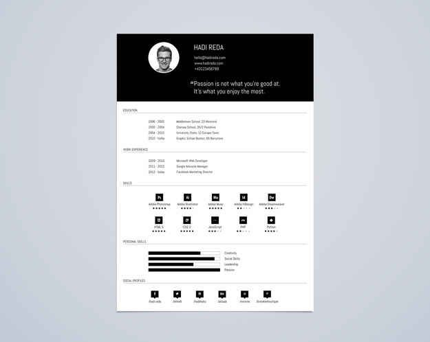 Best Infographic Resume Images On   Infographic