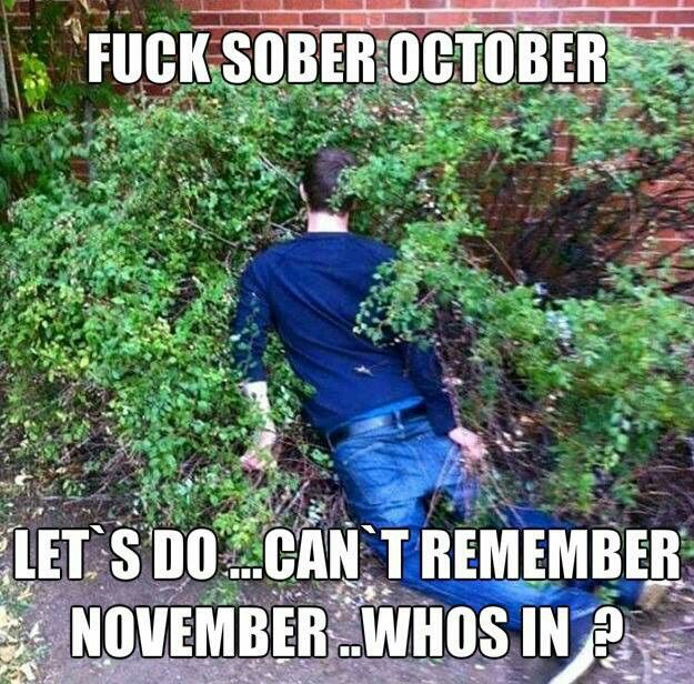 Pin By Michelle Fashingbauer On Funny Shit Sober October Funny Picture Quotes October Quotes