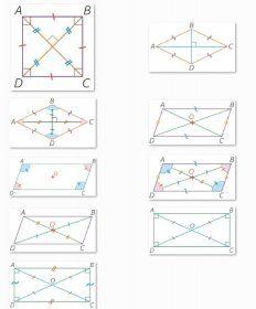 Des images représentant les différentes propriétés des principaux quadrilatères à intégrer à vos exercices.